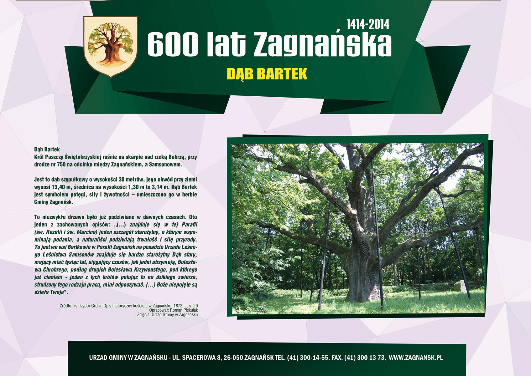 600 lat Zagnańska